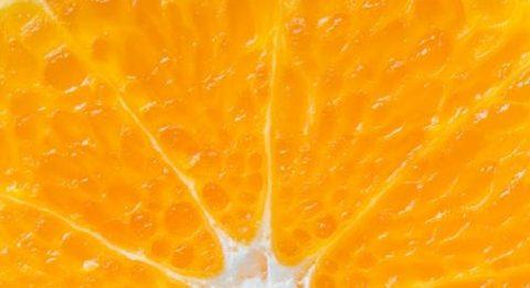 close up image of an orange