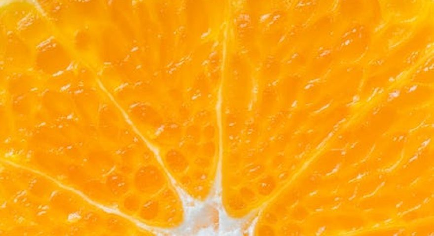close up image of an orange