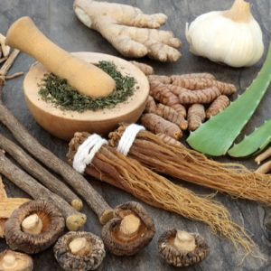 What are Adaptogenic herbs?